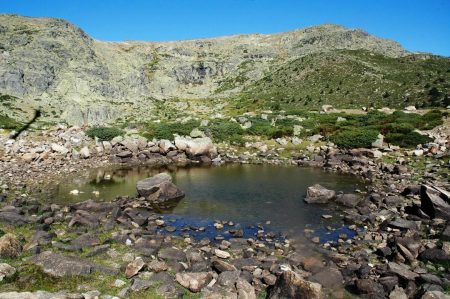 guia-de-los-parques-naturales-de-la-comunidad-de-madrid